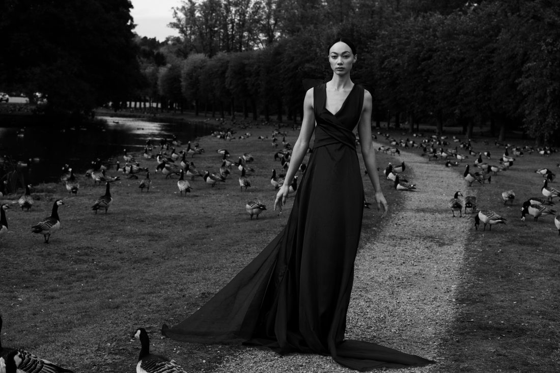 The poetry of blackbirds